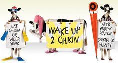 On Monday July 2 at 11 a., meet the Chick-Fil-A cow and have a cow-tastic good time! The cow's friend is going to read a great book. Come discover what other fun activities we have in store for you! Breakfast Places Near Me, Cow Pictures, Cow Pics, Eat More Chicken, Clever Advertising, Chicken Sandwich, Free Breakfast, Toddler Crafts, Fun Activities