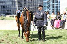Kansas City Missouri Police Department Memorial Service_ Riderless horse