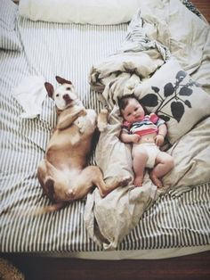 I have a feeling this will be what my dog and child look like in the future. And I sure hope so because I want them to be best friends. :)