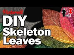 Cool DIY for #Halloween or any other time of the year. Start collecting your leaves!