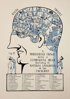 Phrenology Head This screen print is my take on a traditional Phrenology Chart. Phrenology, from the Greek for 'Knowledge of the Mind', a pseudosci. Phrenology Head, Pseudo Science, Ancient Mysteries, Vintage Images, Illustrations Posters, Ephemera, Screen Printing, Vintage World Maps, Language