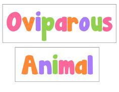 oviparous animals freebie