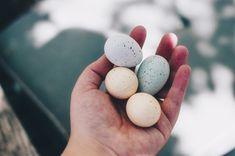 Huevos de Pascua - feels like home