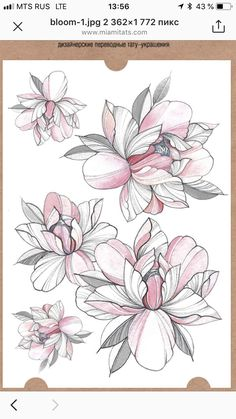 37 Lovely Flower Tattoo Suitable For Women tattoos, flower tattoos, tattoo ideas,tattoo for women Flower Tattoo Drawings, Flower Tattoo Designs, Flower Tattoos, Vintage Flower Tattoo, Thigh Tattoo Designs, Arm Tattoo, Body Art Tattoos, Sleeve Tattoos, Tatoos