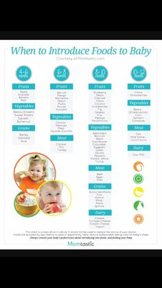 Infant Feeding Chart When To Introduce Which Foods To Baby