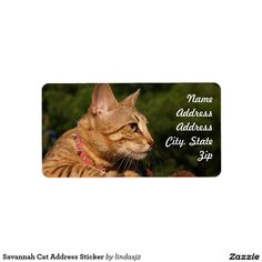Savannah Cat Address Sticker