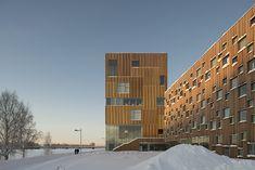 bildmuseet, Umeå