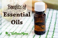 Benefits of Essential Oils Health Benefits of Essential Oils
