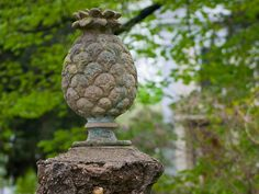 Stone Pineapple.  You'll see carved pineapples at the entrances to some homes when walking around Charleston.