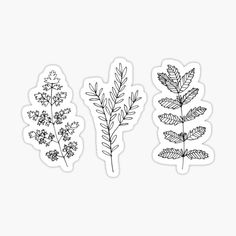 """black and white plants"" Stickers by honey-dulcet Bubble Stickers, Phone Stickers, Journal Stickers, Homemade Stickers, Diy Stickers, Printable Stickers, Black And White Stickers, White Plants, Aesthetic Stickers"