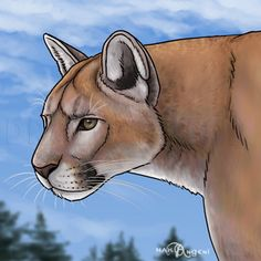 How To Draw Flamingos, Step by Step, Drawing Guide, by makangeni   dragoart.com Cheetah Drawing, Lion Drawing, Nose Drawing, Pumas Animal, How To Draw Flamingo, Panther Cat, Online Drawing, Lion Art, Mountain Lion