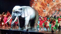 Afrika Afrika - Tips Arena Linz (Elefant) Elephant, Horses, Animals, Linz, Africa, Culture, Music, Animales, Animaux