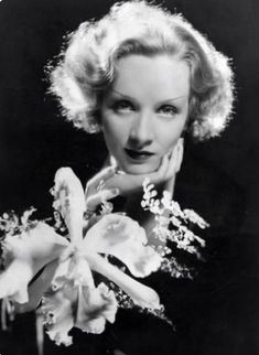 Marlene Dietrich Hollywood actress Photographs HAPPY HOLI ANIMATED GREETINGS CARDS PHOTO GALLERY  | LH6.GOOGLEUSERCONTENT.COM  #EDUCRATSWEB 2020-05-11 lh6.googleusercontent.com https://lh6.googleusercontent.com/proxy/u_wlXTAqlOvtWd8mSPv2yDf3iOdiJb_Y2PheoXqnuPG4UvwcJUY57e7jhmY_WQkxXKk=s0-d