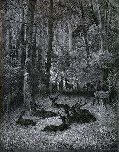 Gustave Doré - The Ailing Stag [Le Cerf Malade], 1867. Illustrations for the Fables of La Fontaine
