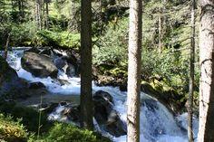 Nationalpark Hohe Tauern - Wildgerlostal Idaho, Aquarium, Waterfall, Places, Outdoor, National Forest, Goldfish Bowl, Outdoors, Aquarium Fish Tank