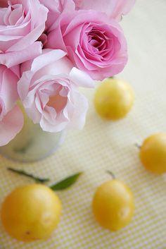 New Column: Color Me Pretty — Rose Orange, Lemon Yellow, Pink Yellow, Pink Love, Pretty In Pink, Yellow Cottage, Pink Lemonade, Vintage Roses, Color Themes