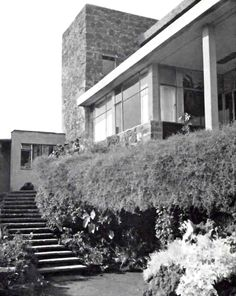 Escalera desde el jardin, Casa Cetto, calle del Agua 130, Jardines del Pedregal, México DF 1949 Arq. Max Cetto - Stairs from the garden, Casa Cetto, Pedregal, Mexico City 1949 #jardín
