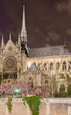 Notre Dame Cathedral by night -Paris, France