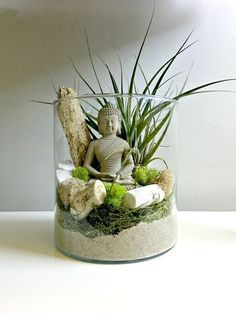 7 Unique Homemade Terrarium Ideas For Your Spring Décor make a smooth woodland setting, display miniature tropicalS or design a sweet fairy garden using plants, curios and found objects, such as pebbles and sea glass. Air Plant Terrarium, Succulent Terrarium, Succulents Garden, Plants For Terrariums, Glass Terrarium Ideas, Watering Succulents, Succulent Display, Pink Succulent, Hanging Terrarium