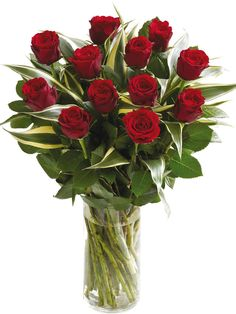 1 dz Standard Red Roses with greens