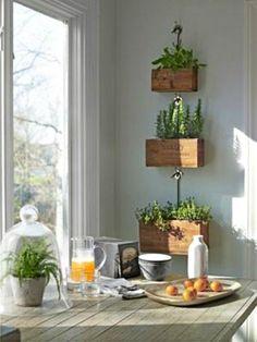 Indoor Herb Garden Ideas - Creative Juice  | @Mindy CREATIVE JUICE | @getcreativejuice.com