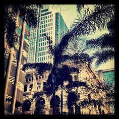 Follow Me @myeyespygallery.wordpress.com Sydney City #iphoneography#photography#mobileonly#blog#byme