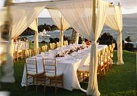 Behind the head table, on the pvc pipe frame in blush pink?