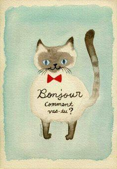 chat bonjour
