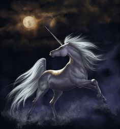 Unicorn - a gallery of magical Unicorn and Pegasus artwork by various artists. This collection of Pegasus and Unicorn images is truly enchanting. Fantasy Unicorn, Unicorn And Fairies, Real Unicorn, The Last Unicorn, Unicorn Horse, Unicorns And Mermaids, Unicorn Art, Unicorn Quotes, Unicorn Painting
