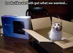 """""""Looks like we both got what we wanted."""""""