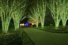 45 Inspiring Backyard Lighting Ideas for Summer - GODIYGO.COM Inspiring backyard lighting ideas for summer 01