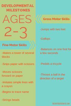 DEVELOPMENTAL MILESTONES: AGES 2-3 - The Inspired Treehouse #babydevelopmentmilestones