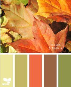 fallen hues by lizzie
