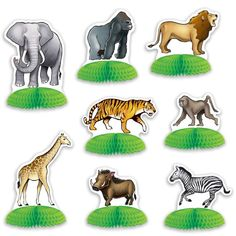 Check out the deal on Jungle Safari Animal Mini Centerpieces. #junglepartyideas #jungleparties #junglepartythemes #junglebirthdays #junglesafariparty #junglethemepartyideas #junglethemebirthdayparty #junglethemeparties #safarijungleparty #junglebirthdaypartyideas #junglebirthdayparties #junglepartydecorations #junglebirthdaytheme #safariparty #junglesafaribirthdayparty #junglekidsparty #partyjungletheme #junglethemebirthday #babyshower  #1stbirthday #photoboothprops #props #themepartyideas