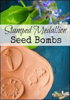 Use natural clay to make these stamped seed bombs, or seed balls, to give as gifts or beautify your own garden for the bees and butterflies.: