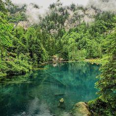 This lake is amazing #photopedropetiz  #blausee #blauseelake #blausee_lake #lake #inlovewithswitzerland #water #explore #exploring #explorenature #exploretheworld #swiss #swissmade #swissalps #switzerland #natureza #naturegram #nationalgeographic #tree #blue  #green #outdoor #awesomedreamplaces #amazingview #amazingplace #amazingswitzerland #travel #mountain #mountains #schweiz Swiss Alps, National Geographic, Switzerland, Amazing, Awesome, Exploring, The Good Place, Blue Green, River