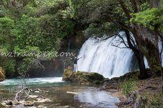 Rotorua, New Zealand New Zealand, Waterfall, Explore, Places, Outdoor, Outdoors, Waterfalls, Outdoor Games, Outdoor Living
