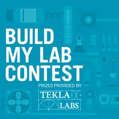 mylab writing contests
