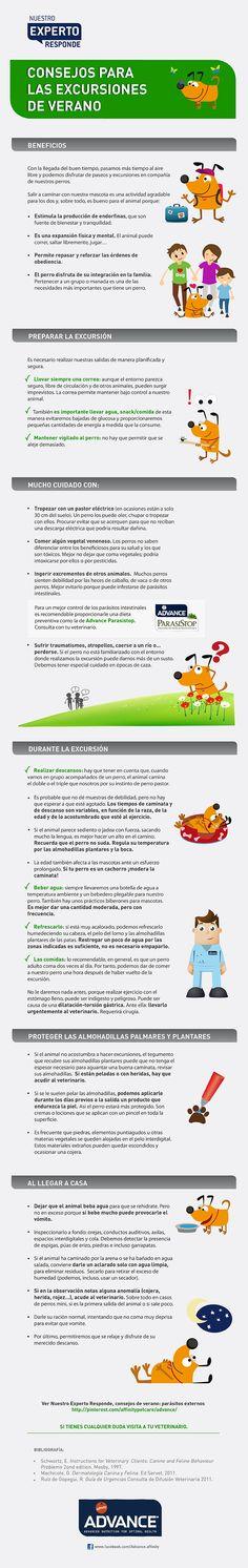 Consejos para cuidar de tus mascotas en verano: Descubre qué es lo que debes tener en cuenta para una excursión con tu mascota https://www.facebook.com/Advance.affinity http://www.affinity-petcare.com/advance/es/index.asp