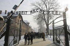 Vervolgens werden de joden verplicht om te gaan werken in Duitsland maar dat was niet ze kwamen terecht in concentratiekampen en daar werden ze vermoord ( Auswitz is een van de bekenste concentratiekampen in de hele wereld).