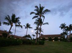 Full Moon on Maui 1