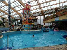 Aquapalace Hotel Praha / Vodni Svet Aquapalace Praha - Tam jedziemy.pl - portal turystyczny