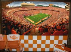 University of Tennessee man cave