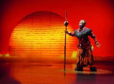 Tomorrow ist the day of the days! Hamburg I am come ! Theater am Hafen Hamburg Lion King Theatre, Lion King Musical, Lion King Broadway, Lion King Jr, Will Turner, Disney Films, Disney Cartoons, Musical In Hamburg, Lion King Images