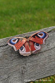 melissa_terlizzi's polymer butterfly
