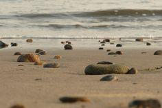 Las piedras y nosotros tenemos un camino en comun*