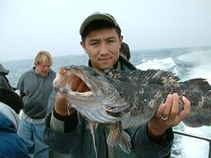Fishing for Lingcod - bait jigs and flies