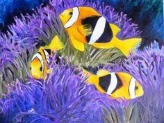 Anemone Fish, Madang