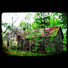 Abandon house in Eatonton Georgia... Let's fix up this cabin!