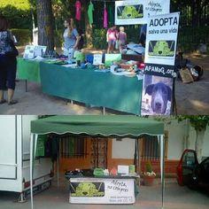 APAMaG @apamag Instagram photos | Websta Éste sábado de 11h a 21h tenemos nuestra feria de adopción de adopción en el Parque O'Donell de Alcalá de Henares. A parte de actividades gratuitas para ti, tu perro y para los niños tendremos nuestro mercadillo solidario! Todo lo que recaudamos es para nuestros animales en adopción, no te lo pierdas! #alcaládehenares #madrid #mercadillosolidario #feriadeadopción #apamagsday 19h Read more at http://websta.me/n/apamag#8USwj1CLHvCF63O4.99